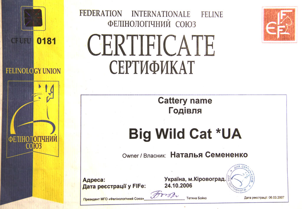 Сертификат Federation Internationale Feline